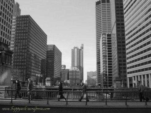 Chicago 2005