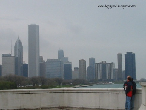 view from the Shedd Museum