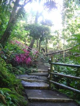 en route to the hidden waterfalls