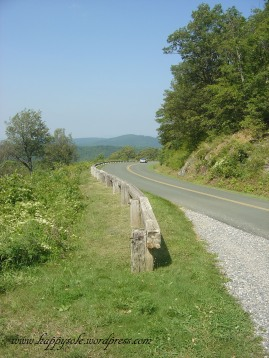 Blueridge Parkway, VA 2009