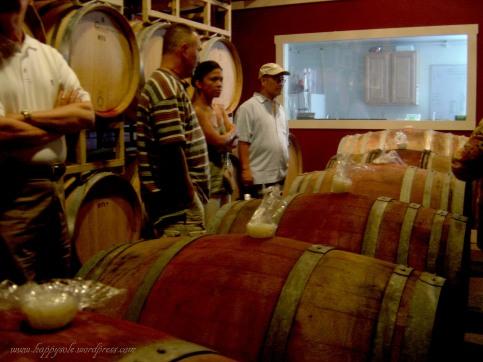Jefferson Vineyards (2)