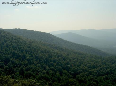 Blueridge Mountain