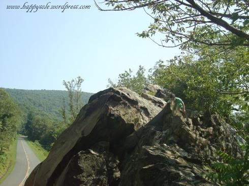sharp pointed rocks